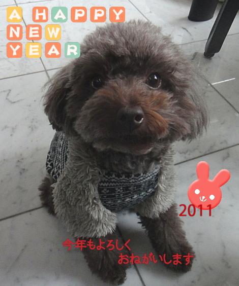 古賀克重法律事務所ブログ 謹賀新年 2011年のご挨拶